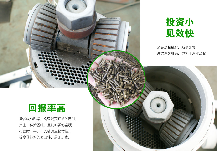 饲料颗粒机压辊环模图片